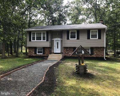 Browns Mills Single Family Home For Sale: 214 N Carolina Trail
