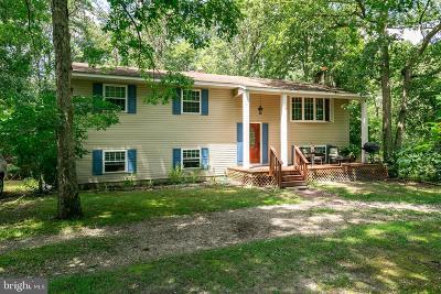Southampton Single Family Home For Sale: 213 Avenue Road
