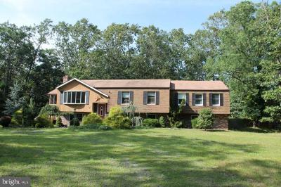 Tabernacle Single Family Home For Sale: 136 Powell Place Road
