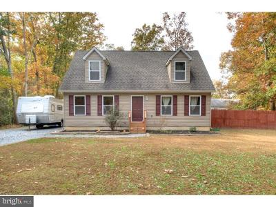Millville Single Family Home For Sale: 319 Opal Road