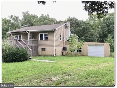 Single Family Home For Sale: 4418 Route 47