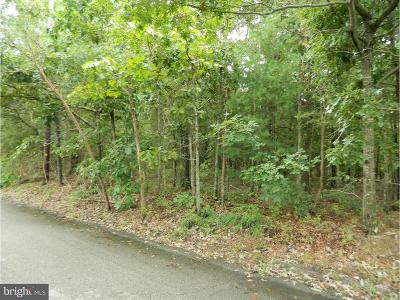 Millville Residential Lots & Land For Sale: 727 Shewchenko Avenue