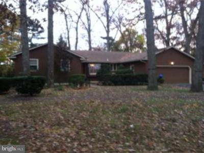 Cumberland County Single Family Home For Sale: 1583 E Chestnut Avenue