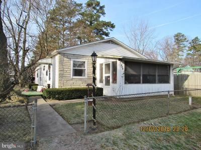 Millville Single Family Home For Sale: 209 Dandelion Road