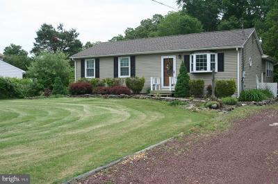 Single Family Home For Sale: 503 Rosenhayn Avenue