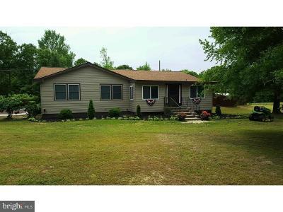 Single Family Home For Sale: 25 Leesburg Belleplain Road