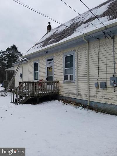 Millville Single Family Home For Sale: 87 Hesstown Road