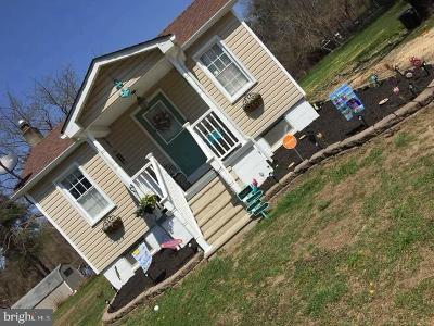 Millville Single Family Home For Sale: 1372 Bdgtn Millville Pike