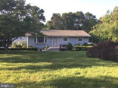 Cumberland County Single Family Home For Sale: 645 Lummistown Road