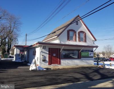 Vineland Commercial For Sale: 12 4th