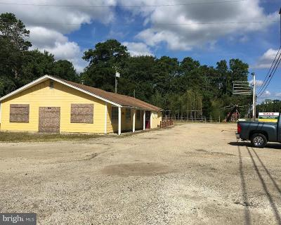 Millville Commercial For Sale: 3280 Route 47