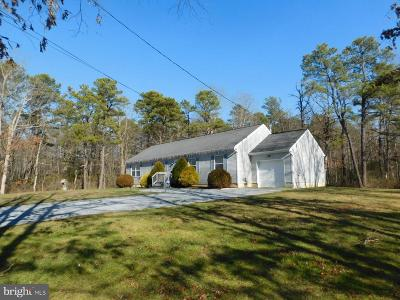 Vineland Single Family Home For Sale: 3051 Panther Road