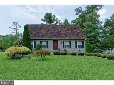 Vineland Single Family Home For Sale: 2828 Perna Lane