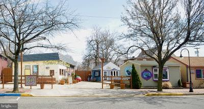 Millville Commercial For Sale: 501 N High Street