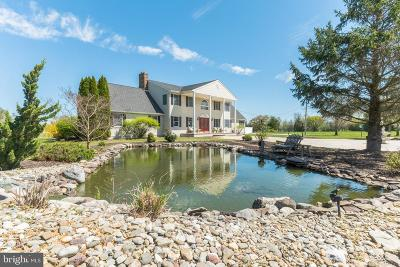 Cumberland County Single Family Home For Sale: 91 Fox Road