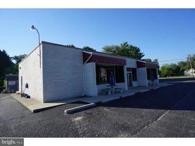 Vineland Commercial For Sale: 4059 S Main Road