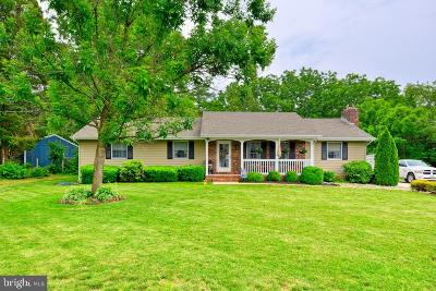 Cumberland County Single Family Home For Sale: 221 Esibill Avenue
