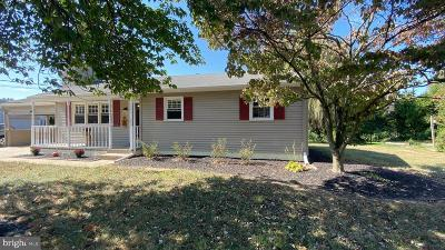 Single Family Home For Sale: 389 W Park Drive