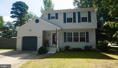 Cumberland County Single Family Home For Sale: 1209 Geissel Drive