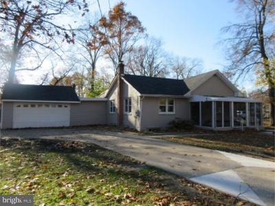 Pine Hill Single Family Home For Sale: 38 W Branch Avenue