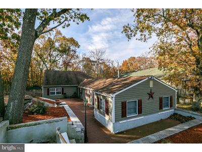 Pine Hill Single Family Home For Sale: 88 W 3rd Avenue