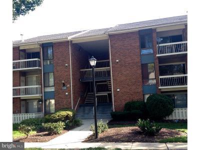 Rental For Rent: 116 Van Buren Road #6