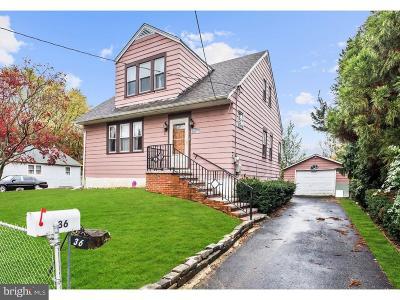 Bellmawr Single Family Home For Sale: 36 Apple Avenue