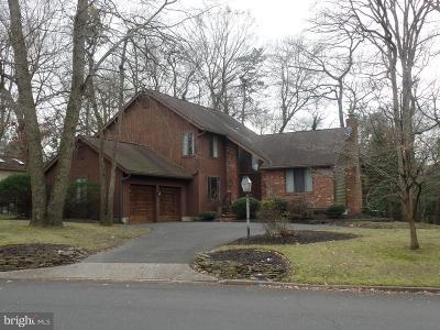 Voorhees Single Family Home For Sale: 2 E Red Oak Drive