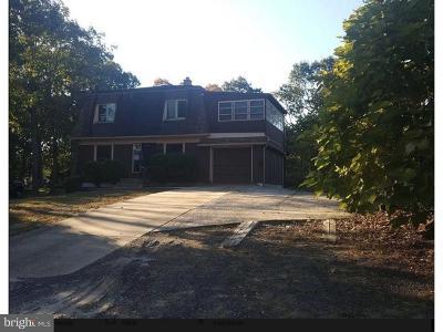 Pine Hill Single Family Home For Sale: 128 Diamond Avenue