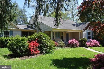 Laurel Springs Single Family Home For Sale: 505 Beech Avenue