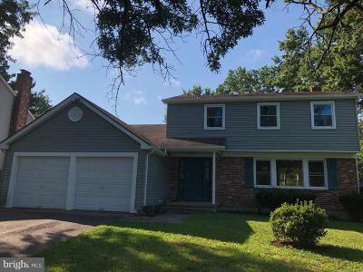 Gloucester Twp Single Family Home For Sale: 704 Somerdale Road