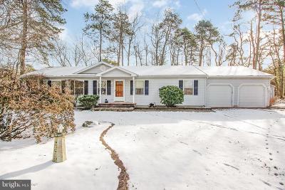 Clementon Single Family Home For Sale: 1 Palmetta Avenue