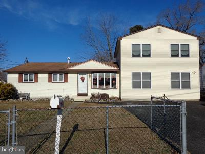 Pine Hill Single Family Home For Sale: 20 Macknight Drive