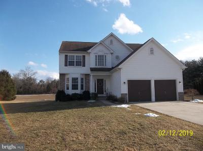 Sicklerville Single Family Home For Sale: 113 Christmas Tree Court