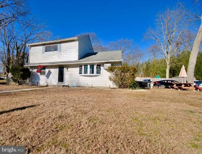 Pine Hill Single Family Home For Sale: 83 W 1st Ave