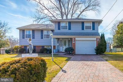 Stratford Single Family Home For Sale: 12 Knoll Road
