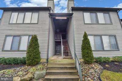 Cherry Hill Condo For Sale: 1813 The Woods Ii