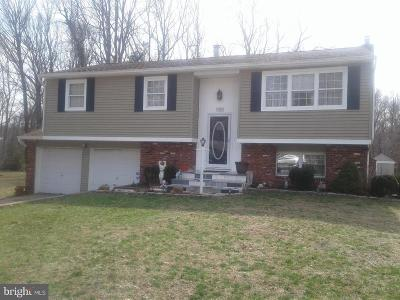 Pine Hill Single Family Home For Sale: 20 Sherri Way
