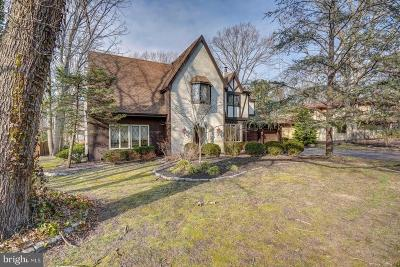Voorhees Single Family Home For Sale: 206 Whitehall Court