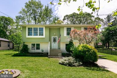 Pine Hill Single Family Home For Sale: 172 E 10th Avenue