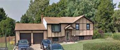 Sicklerville Single Family Home For Sale: 107 Davis Avenue