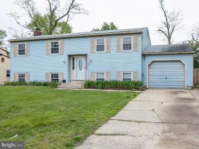 Single Family Home For Sale: 27 Lincoln Drive