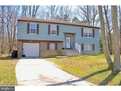 Gloucester Twp Single Family Home For Sale: 26 Deb Lynn Drive