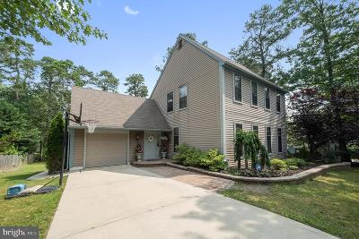 Voorhees Single Family Home For Sale: 12 William Feather Drive
