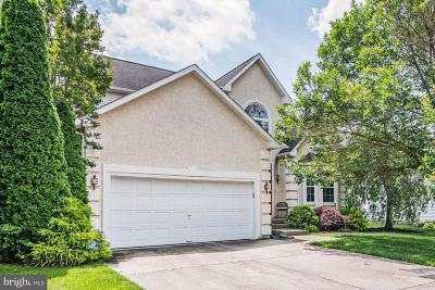 Sicklerville Single Family Home For Sale: 6 Michael Road