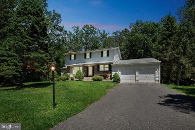 Clementon Single Family Home For Sale: 150 N Smith Terrace
