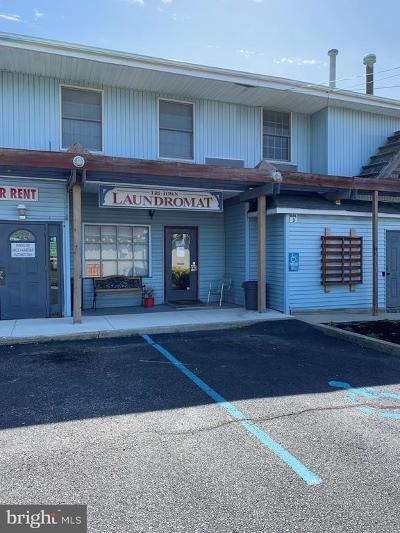 Merchantville Single Family Home For Sale: 177 S Centre Street #LAUNDROM