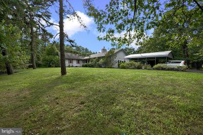 Hammonton Single Family Home For Sale: 361 E Fleming Pike