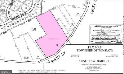 Hammonton Single Family Home For Sale: 109 Beebetown Road
