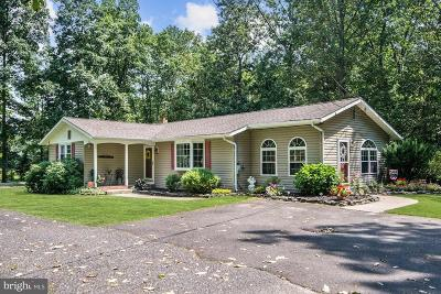 Franklinville Single Family Home For Sale: 656 Fries Mill Road